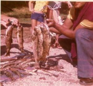 La belle époque des pêcheurs