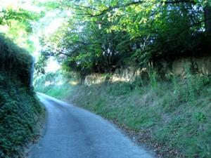 Chemin des Valottes