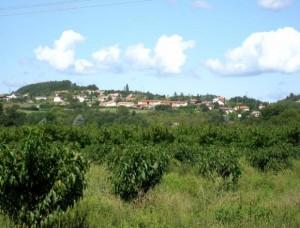 Mordant-La colline vue depuis Glay